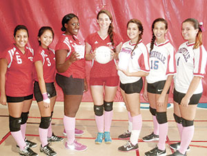 volleyball_fundraiser_web