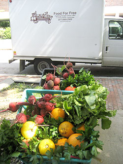 Food For Free helps residents in need by gathering surplus food and distributing it where it is most needed.