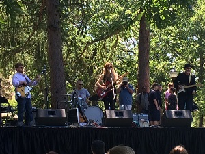 The cool shade of Powderhouse Park (a.k.a Nathan Tufts Park) served as the perfect venue for Joe's Jazz and Blues Fest 2016.